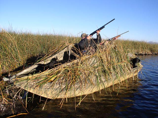 Willie Boats For Sale >> Camo Line - Willie Boats